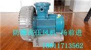 防爆高压气泵,防爆旋涡风泵
