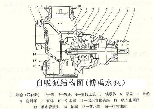 自吸泵的结构及自吸泵的工作原理知识