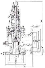 波紋管背壓平衡全啟式安全閥