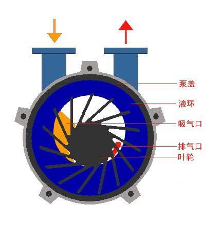 > 水环式真空泵结构         如图(1)所示叶轮3偏心地安装在泵体之内